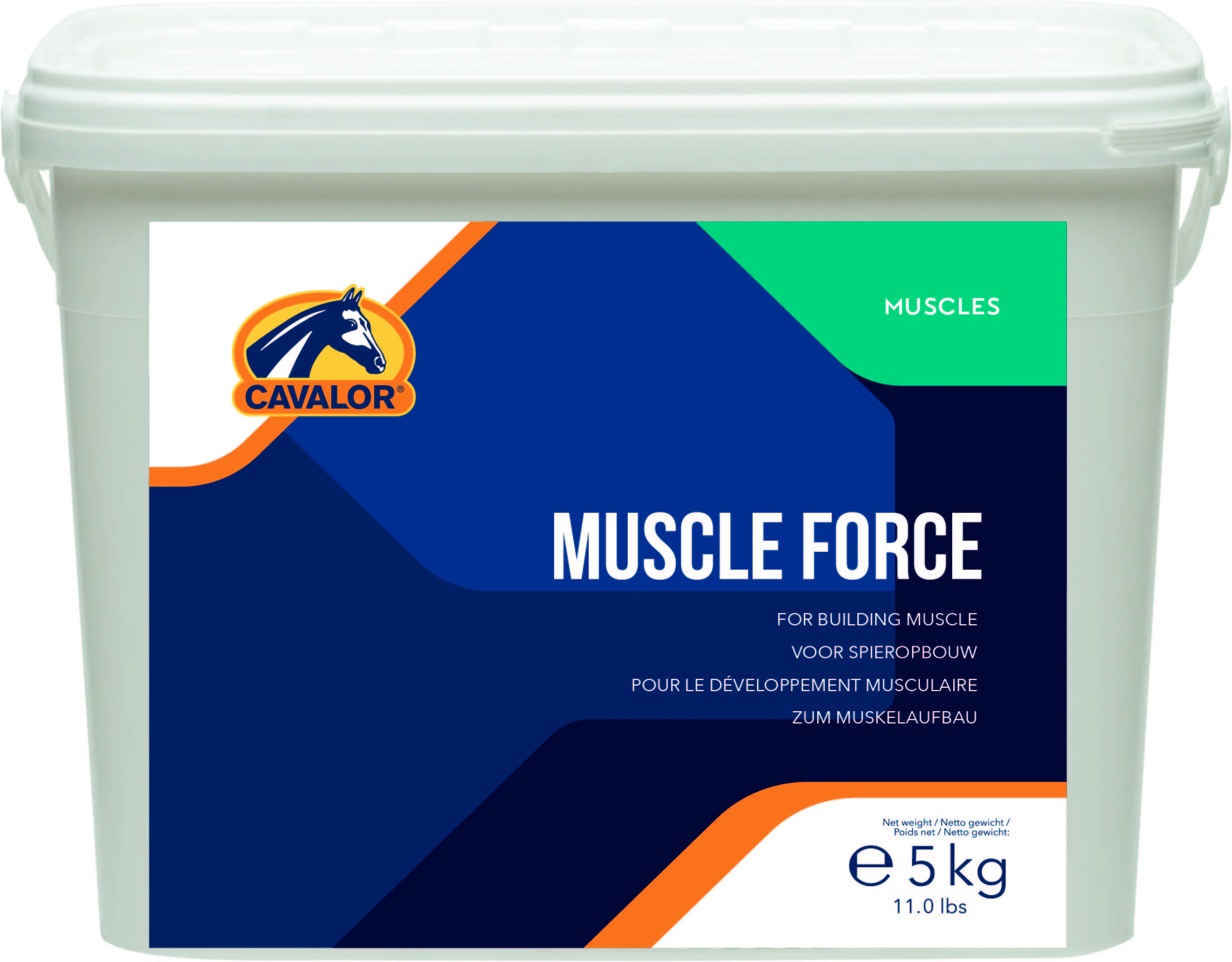 Muscle_Force_506965a6704cf.png
