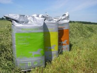Golden Grass Timothy Ryegrass Mix 20 Kg